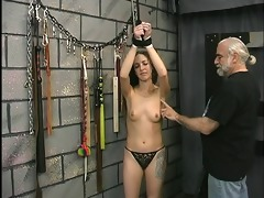 cute youthful dark brown is restrained and made